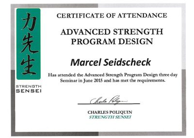 advanced-strength-program-design